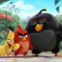 Teaser trailer na Angry Birds Movie je tu! Mrkněte se