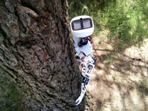 Sledujte online, jak robot Matylda jede stopem do Pelhřimova pro rekord